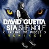 musica,video,testi,traduzioni,david guetta,video david guetta,testi david guetta,traduzioni david guetta,sia