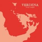Verdena - Un Po' Esageri - Video Testo