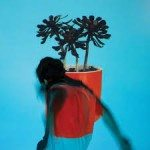 local natives cd2016