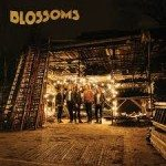blossoms cd2016