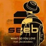 seeb what do you love