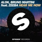 Alok, Bruno Martini feat. Zeeba - Hear Me Now - Video Testo Traduzione