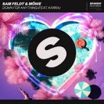 sam feldt down