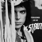 the struts primadonna