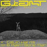 Calvin Harris, Rag'n'Bone Man - Giant