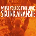 skunk anansie what you do