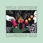 wild nothing ep2020